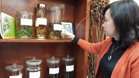Vietnam not satisfied about medicinal herb preservation