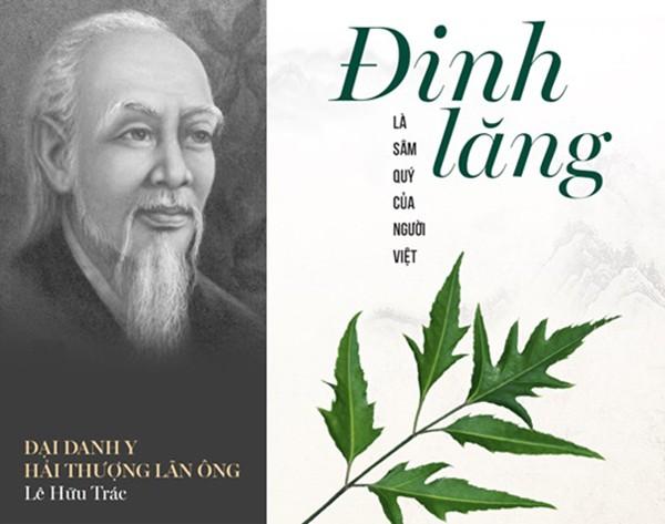 Danh y Hải Thượng Lãn Ông ví Đinh Lăng là sâm của người Việt